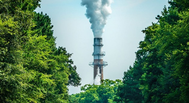 Carbon Emissions are down